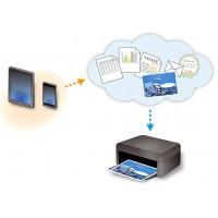 Cài đặt, chia sẽ và quản lý máy in trong Windows Server 2008