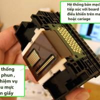 Video cấu tạo , nguyên tắc hoạt động của đầu phun Canon